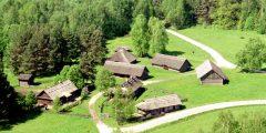 Audros pažeisto miško Lietuvos liaudies buities muziejuje atkūrimas