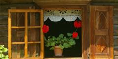 Medinio paveldo šventė – gegužės 20 dieną